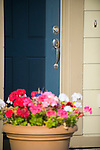 Blue Front Door with Flowers