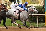 01-25-19 Smarty Jones Stakes Oaklawn Park
