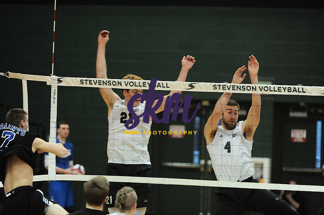 Stevenson men's volleyball remains undefeated in conference play as they took a 3-1 win over Marymount (VA) with set scores of (21-25), (25-27), (27-25) and (19-25) on Wednesday night at Owings Mills gymnasium.
