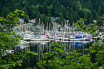 Yachts,pleasure craft, with the background of houses and forest  overlooking Deep Cove, North Vancouver, British Columbia, Canada.
