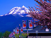 Squamish, BC, British Columbia, Canada - Mount Garibaldi (elev 2675 m) in Garibaldi Provincial Park, City Street Banners, Spring - Outdoor Recreation Capital of Canada