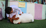 Palestinian children learn how to sacrifice in Islam, as part of training children how to perform Hajj pilgrimage, in Gaza city on August 06, 2019. Muslims from around the world flood Saudi city of Mecca to perform the annual Hajj pilgrimage, which is one of the five pillars of Islam. Photo by Mahmoud Al-Hindi
