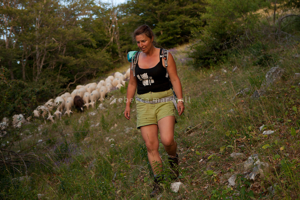 Isabelle Feynerol leads her flock of sheep back down the slopes of La Montagne du Thiey above the hamlet of Canaux in the Alpes Maritimes above Grasse, France, 02 August 2013. 49 years of age, Isabelle worked as a nurse before taking over the farm from her parents in 2000.