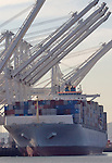Port of Long Beach, Container Cranes; Container Ship; CSCO, China Ocean Shipping Company, COSCO Group, Ship is the COSCO Japan, a dry bulk carrier,