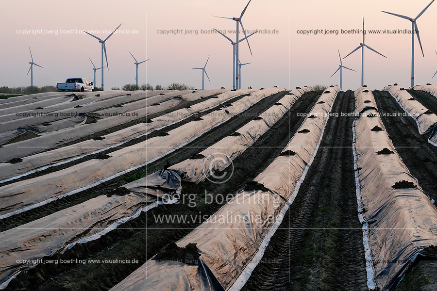 GERMANY, Plauerhagen, asparagus field and Eno wind turbines / DEUTSCHLAND, Plauerhagen, Spargelfeld und Windpark der Mannheimer Stadtwerke MVV mit ENO Windkraftanlagen