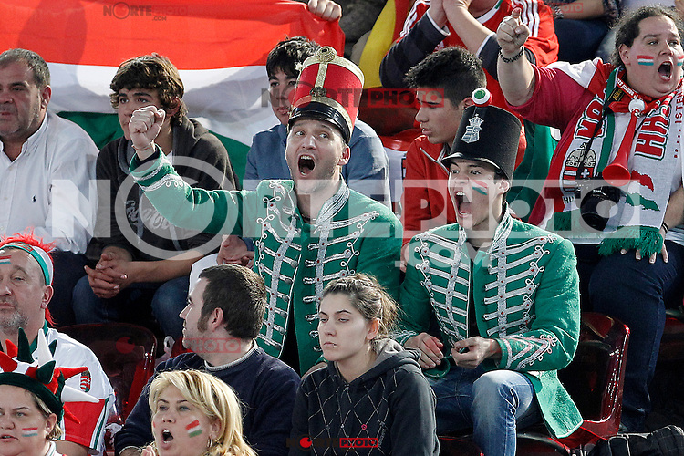 Hungary's supporters during 23rd Men's Handball World Championship preliminary round match Hungary v Spain.January 17,2013. (ALTERPHOTOS/Acero)
