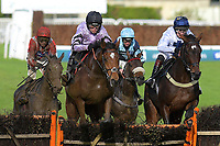 Winner of The That Friday-Ad Feeling Maiden Hurdle Calva D'Auge (purple) ridden by Harry Cobden and trained by Paul Nicholls during Horse Racing at Plumpton Racecourse on 4th November 2019