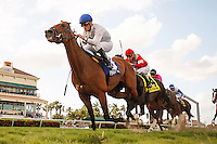 HALLANDALE BEACH, FL - MARCH 04: #3 Heart to Heart with jockey Julien Leparoux up wins the Canadian Turf  Handicap (G3) at Gulfstream Park. (Photo by Arron Haggart/Eclipse Sportswire/Getty Images)