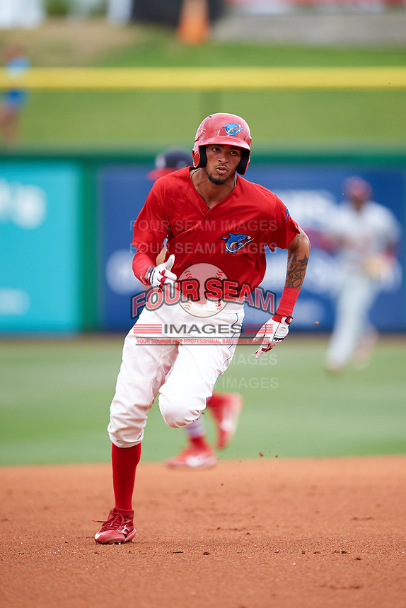 Clearwater Threshers designated hitter Jose Pujols (23) running the bases during a game against the Palm Beach Cardinals on April 15, 2017 at Spectrum Field in Clearwater, Florida.  Clearwater defeated Palm Beach 2-1.  (Mike Janes/Four Seam Images)