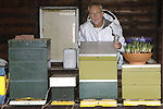 Foto: VidiPhoto<br /> <br /> WAGENINGEN &ndash; Imker en bestuurslid Frank Moens van de Nederlandse Bijenhouders Vereniging (NBV) controleert donderdag bij het Bijenhuis in Wageningen, de kasten van de Wageningse bijenvereniging. Zodra de temperaturen rond de 10 graden zijn, komen de eerste bijen al naar buiten. Omdat er dan nog geen voedsel voor de dieren in de natuur is, heeft de vereniging een schaal met bloeiende krokussen en blauwe druifjes geplaatst, waaruit nectar gehaald kan worden. De populariteit voor het houden van bijen neemt enorm toe, vooral ook bij vrouwen en jongeren. Deze winter heeft de NBV 1000 nieuwe deelnemers voor 80 bijencursussen. Het aantal bijenvolken is inmiddels toegenomen tot 90.000. Maandag neemt minister Carola Schouten de eerste Nationale Bijenstrategie in ontvangst, waarin diverse organisaties de handen ineenslaan om bestuivers en bestuiving duurzaam te bevorderen.