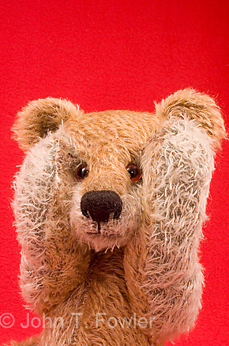 Teddy bear showing frustration, fatique, despair