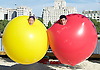 Air Play <br /> Acrobuffos <br /> perform at the Southbank Centre Festival of Love Royal Festival Hall, Southbank, London, Great Britain <br /> press photocall <br /> 8th August 2016 <br /> Copacabana Beach comes to the Southbank <br /> Seth Bloom <br /> Christina Gelsone <br /> <br /> <br /> Photograph by Elliott Franks <br /> Image licensed to Elliott Franks Photography Services