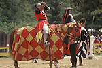 A Renaissance reenactment faire based in Larkspur, Douglas County Colorado. Includes live theater, jousting, period costumes and artisan booths.