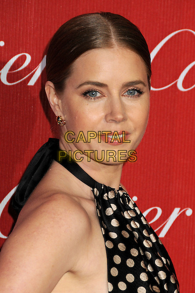 4 Januray 2014 - Palm Springs, California - Amy Adams. 25th Annual Palm Springs International Film Festival held at the Palm Springs Convention Ceter.  <br /> CAP/ADM/BP<br /> &copy;Byron Purvis/AdMedia/Capital Pictures
