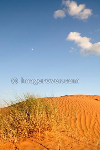 Africa, Tunisia, nr. Ksar Rhilane. Sunset and moonrise in the the beautiful Sahara sand dunes north east of Ksar Ghilane.