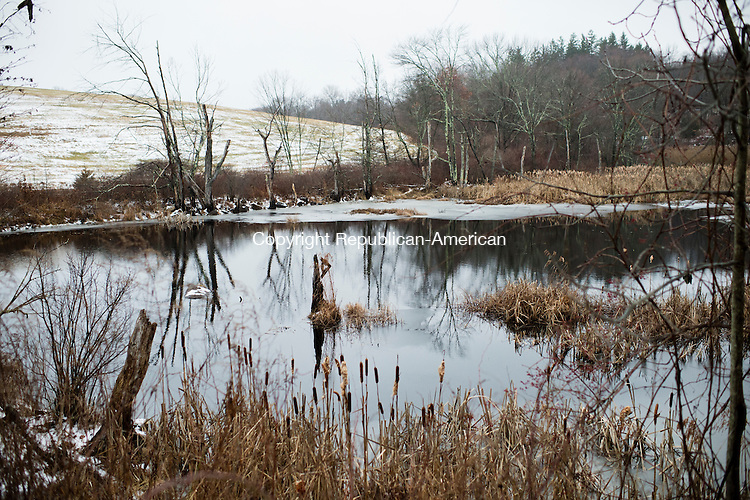 MIDDLEBURY, CT - 29 December 2015-122915EC02--   Wild Art Pomperaug. A pond along Old Sherman Hill Road in Woodbury is still after Tuesday's first dusting of snow. Erin Covey Republican-American.