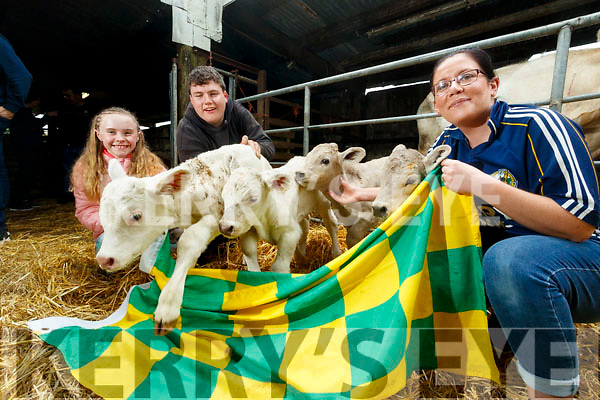 Chloe Collins, Paddy Howard and Martina Gaire O'Connor with the Four surviving calves of the Five that were born  on the Howard farm in Kilsarcon, Currow.
