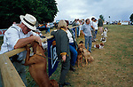 Dog  show.<br />