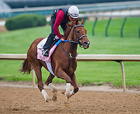 Pure Fun, trained by Ken McPeek, works out in preparation for the Kentucky Oaks at Churchill Downs on April 29, 2013.