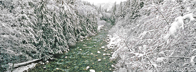 South Fork Snoqualmie River flows through a snowy winter forest, Central Cascades Mountain Range.
