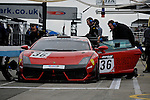 Nico Pronk/Peter Kox - Reiter Engineering Lamborghini LP560-4