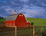Whitman County, WA: Red barn with gambrel roof under morning clouds with rolling hills of the Palouse ine the background near Oakesdale