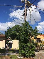 2017 FPL Hurricane Irma restoration in Miami, Fla. on Sept. 15, 2017.