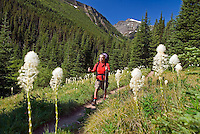 Hiking the Tamarack trail, Waterton NP, Alberta, Canada