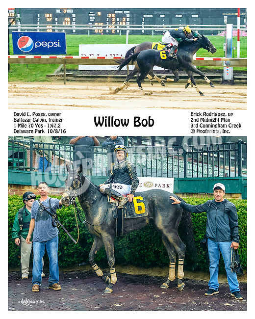 Willow Bob winning at Delaware Park on 10/8/16