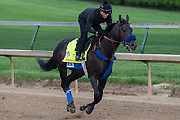 LOUISVILLE, KY - MAY 3:  Instilled Regard, trained by Jerry Hollendorfer, exercises in preparation for the Kentucky Derby at Churchill Downs on May 3, 2018 in Louisville, Kentucky. (Photo by Eric Patterson/Eclipse Sportswire/Getty Images)