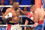 Dillian Whyte VS Ivica Bacurin - Heavyweight Contest
