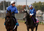October 30, 2018 : The Black Album and Lily's Candle in preparation for the Breeders' Cup on November 01, 2018 in Louisville, KY.  Candice Chavez/ESW/CSM