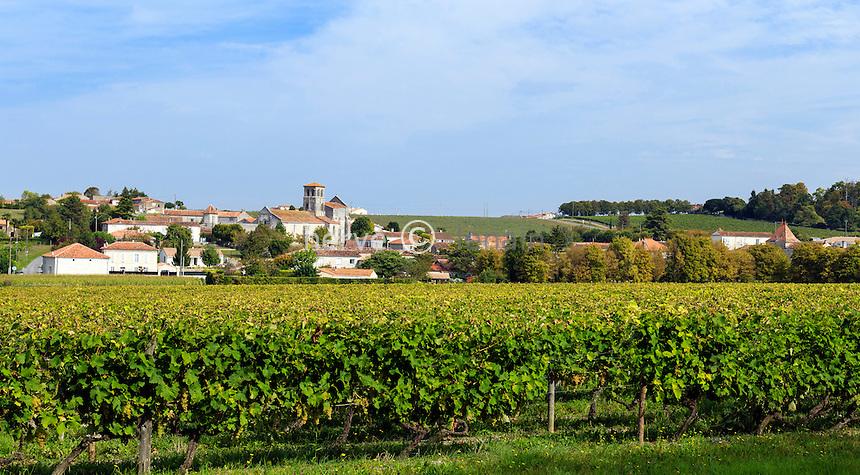 France, Charente (16), Juillac-le-Coq, l'église Saint-Martin et le vignoble de Cognac // France, Charente, Juillac le Coq, the village, Saint Martin church and the Cognac vineyard