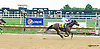 Thealkascrafty winning in at Delaware Park on 9/25/15