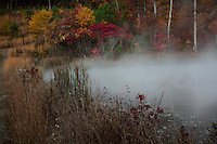 A foggy fall morning in the Ozark National Forrest in Arkansas.