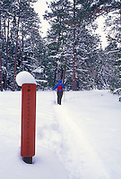 A winter hiker passes a trail marker for the Lakeshore Trail in Pictured Rocks National Lakeshore near Munising, Mich.