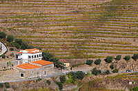vineyards quinta do judeu douro portugal