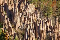 Italy, Alto Adige - Trentino (South Tyrol), Renon: the earth pyramides (Hoodoos) near Longomoso   Italien, Suedtirol (Alto Adige-Trentino), Ritten: die Erdpyramiden bei Lengmoos am Ritten