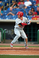 Palm Beach Cardinals left fielder Casey Turgeon (29) at bat during a game against the Clearwater Threshers on April 14, 2017 at Spectrum Field in Clearwater, Florida.  Clearwater defeated Palm Beach 6-2.  (Mike Janes/Four Seam Images)