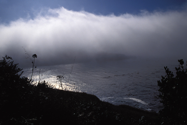 Fog rising off the bay in Mendocino, California