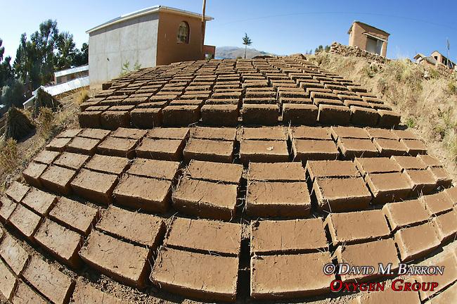 Drying Adobe Bricks