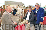 Taking it easy; John Enright, Castlemaine, Padraig Foley, Ballyard, Tralee and Ned Lynch also from Ballyard, Tralee taking it easy and having a chat  at Listowel horse fair on Thursday last..