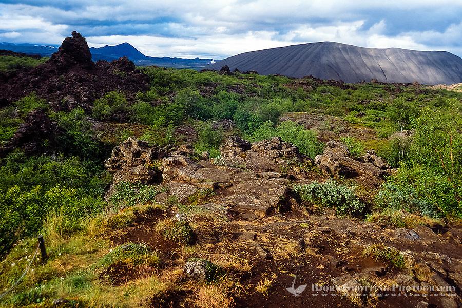 Iceland. Dimmuborgir lava fields east of Mývatn.