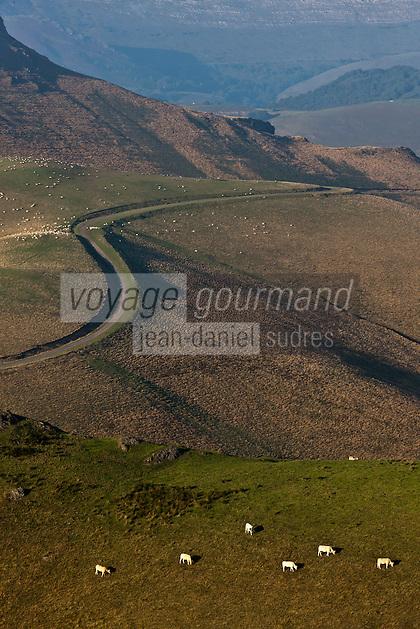Europe/France/Aquitaine/64/Pyrénées-Atlantiques/Pays-Basque/Iraty: Plateau d'Iraty sur la route d'Estérençuby, vers Phagalcette