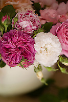 Sumptuous pink, white and variegated pink and white roses in a vase