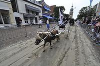 ALGEMEEN: JOURE: 24-07-2013, Boerebrulloft Joure, ©foto Martin de Jong