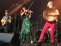 Cambridge Folk Festival  - Day Two - at Cherry Hinton Hall, Cambridge, UK on August 3rd 2019