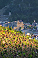 hermitage vineyard and town of tournon sur rhone hermitage rhone france