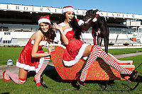 NO REPRO FEE. 1/11/2011.Christmas Crackers Georgia Salpa, Rosanna Davison, Miss Universe Ireland Aoife Hannon and some of Irelands Greyhounds took to the track today at Shelbourne Park in their sleigh to launch Christmas Nights at the Dogs. The Irish Greyhound Board are launching Christmas Party Night at the Dogs at their Greyhound Stadia around the Country, encouraging everyone to book a fun night at the dogs to celebrate  the festive season. With Packages to suit every pocket from restaurant dining to drinks with the lads, it really is heart racing stuff. For more information please contact Claire O Grady insight Consultants claire@insightconsultants.ie. Picture James Horan/Collins Photo Agency