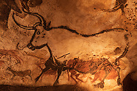 Europe/France/Aquitaine/24/Dordogne/Périgord Noir/Montignac: Grotte de Lascaux II - Grottes ornée  paléolithique - Taureau [Non destiné à un usage publicitaire - Not intended for an advertising use]